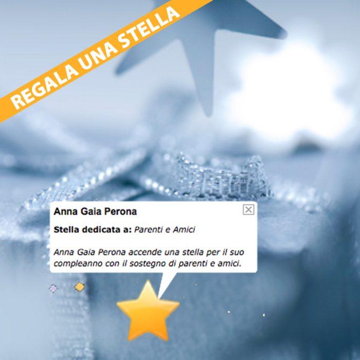 Stella Gold Lilt Biella